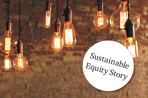Sustainable Equity Story