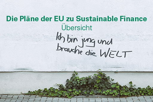 Quarterly - extra (2019): Die Pläne der EU zu Sustainable Finance